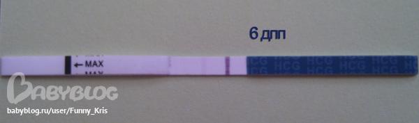 На 5 и 6 дпп эмбрионов мажет коричневым 14
