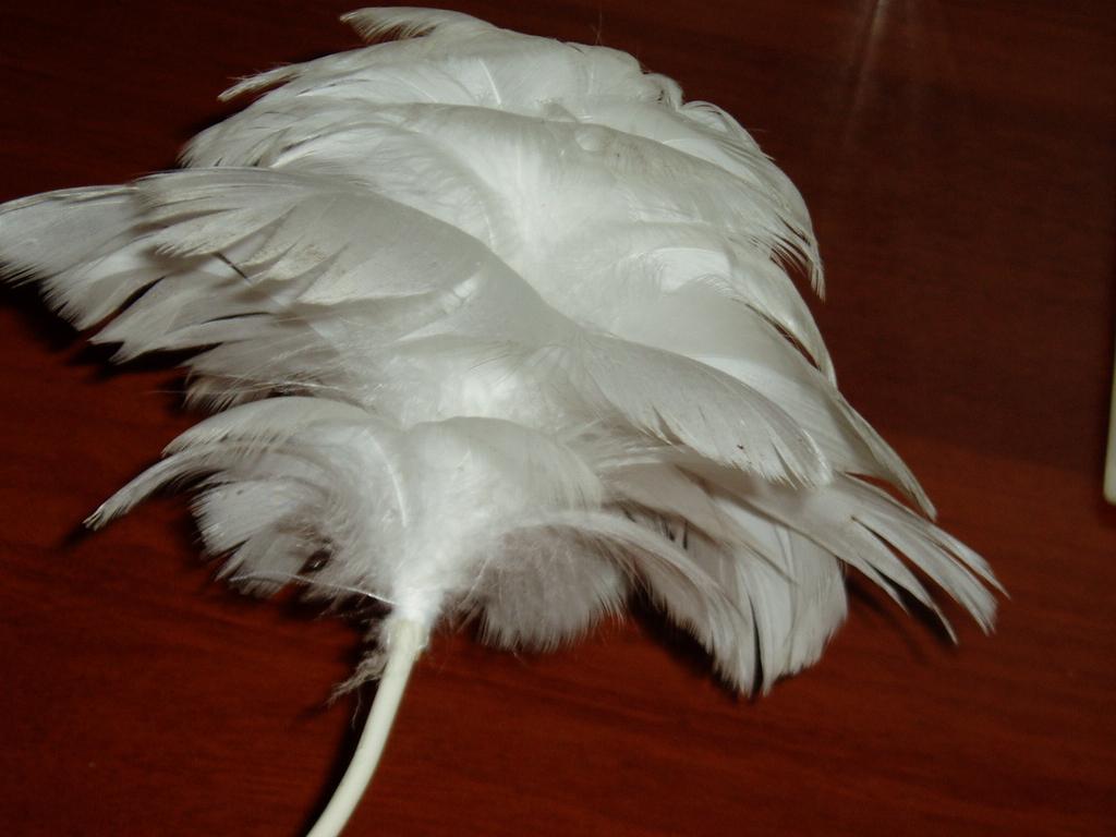 Цветок из перьев своими руками