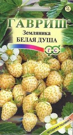 Продам: семена почтой, купить: семена почтой.