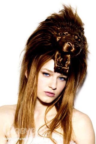 Animal hairstyles