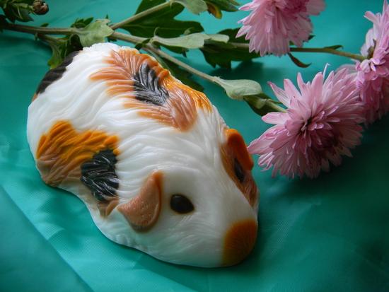 Можно ли морским свинкам картошку