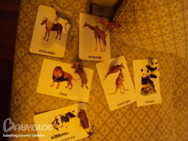 Домана маниченко карточки своими руками 91
