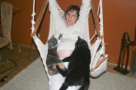 Что значит когда кошка ложится на живот беременной