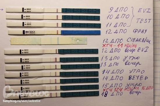 Тесты на беременность в динамике